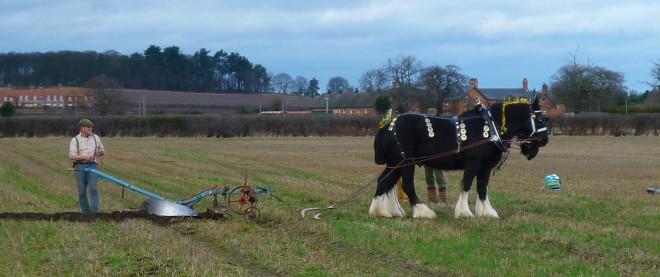 Ploughing 003