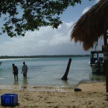 Tobago Feb 06 211