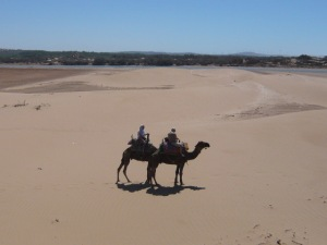 Me and my husband on our camels, Cappuccino and Tarzan