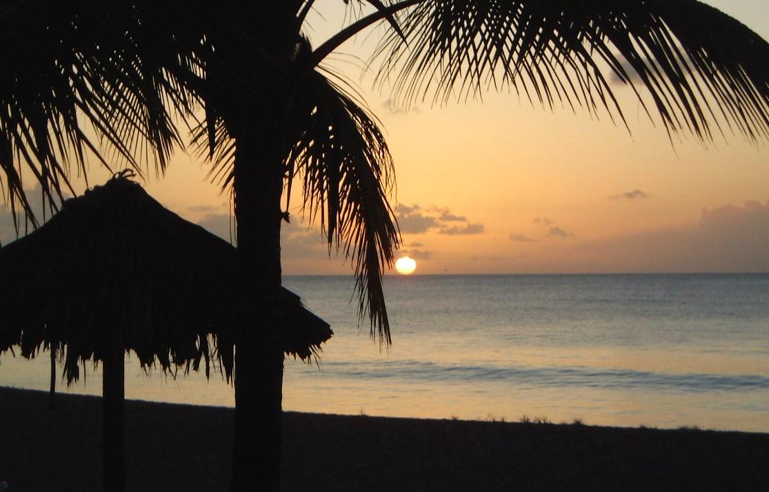 Tobago Feb 06 126
