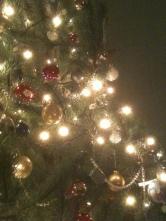 Christmas 11 063